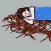 9a-sleeping-crab